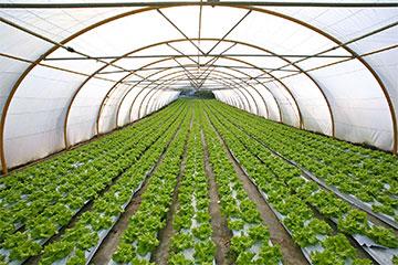 Kunden_LandwirtschaftGarten Wasseraufbereitung, Enthärtungsanlagen und weiches und kalkfreies Wasser von Kern Wassertechnik in Mömbris